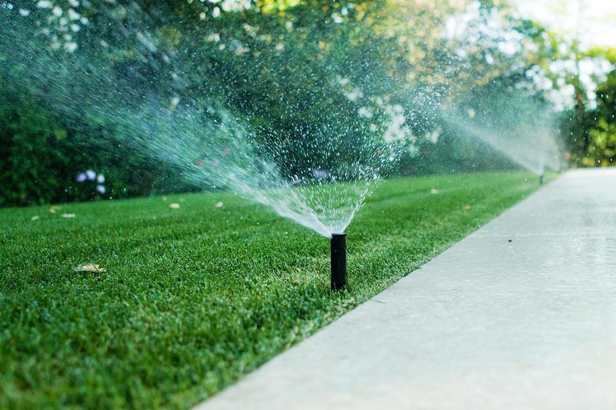 Come progettare e realizzare un impianto di irrigazione for Irrigazione giardino